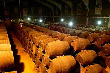Aguilar de La Frontera, Toro Albala Wine Cellar, Montilla-Moriles Wine Route, Cordoba, Andalusia, Spain.