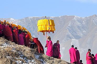 China, Gansu, Amdo, Xiahe, Monastery of Labrang Labuleng Si, Losar New Year festival, Giant Thangka and parasol bearers climbing uphill
