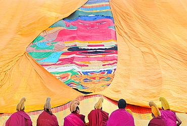 China, Gansu, Amdo, Xiahe, Monastery of Labrang Labuleng Si, Losar New Year festival, Furling of the giant Thangka