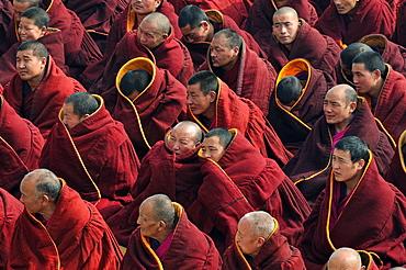 China, Gansu, Amdo, Xiahe, Monastery of Labrang Labuleng Si, Losar New Year festival
