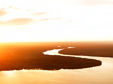Aerial image of a tributary snaking through the jungle at sunset