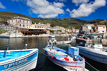 France, Corsica, Haute-Corse Department, Le Cap Corse, Centuri, port view