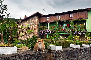 Rural house in Rasines Santander Cantabria Spain