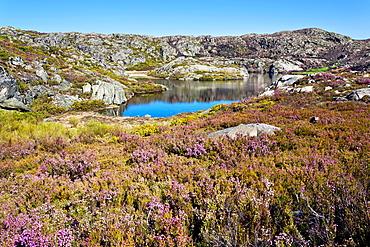 Mancas lagoon in the Sanabria Natural Park Zamora Castilla Leon Spain