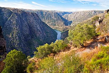 Arribes del Duero from the Colagon del Tio Paco viewpoint Mieza Salamanca Castilla Leon Spain