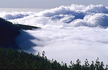 Fogg in Teide National Park Tenerife island Canary islands Spain
