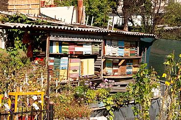 Bee boxes in a garden, Travnik, Bosnia and Herzegovina
