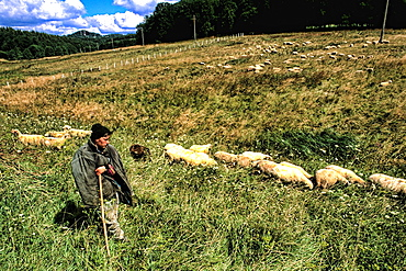 Bosnia and Hercegovina portrait of young sheep herder near Sarajevo