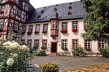 Germany Rudesheim Old Town by Rhine River tourist attraction Siegrried Mechanical Music Box Museum