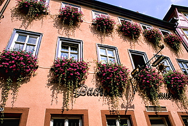 Germany Wertheim Old Town by Rhine River buildings