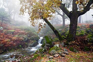 Graja gorge in the Sierra de Gredos Piedralaves avila Castilla Leon Spain