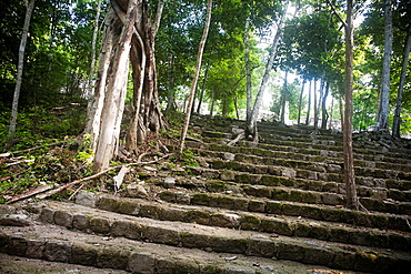 Archeological site Calakmul, Yucatan Peninsula, Mexico