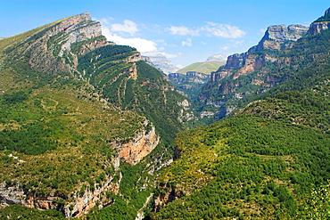 Canyon of Anisclo Valley, belonging to Ordesa y Monte Perdido National Park Pyrenees Fanlo Huesca province Aragon Spain