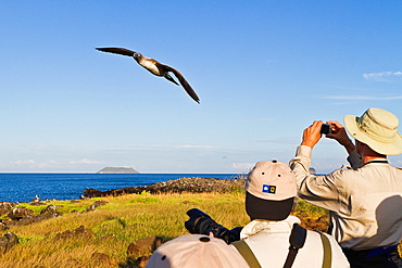 Guests from the Lindblad Expedition ship National Geographic Endeavour with blue-footed booby on North Seymour Island in the Galapagos Islands, Ecuador