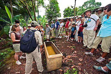 Guests from the Lindblad Expedition ship National Geographic Endeavour visit a sugar cane distillery on Santa Cruz Island in the Galapagos Islands, Ecuador