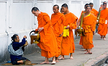 Barefoot monks collecting food and drink alms early morning Luang Prabang Laos PDR