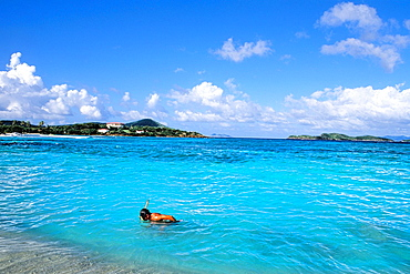 St Thomas beautiful beaches and blue water with snorkler at famous Sapphire Beach