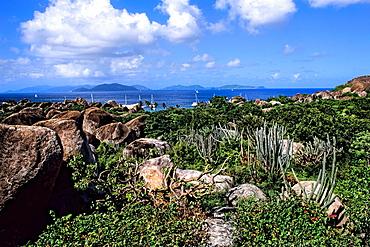 Beautiful rocks and landscape plants at The Baths of Virgin Gorda in British Virgin Islands