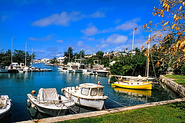 Bermuda Colorful Crow Lane Park with boats in water at harbour in Hamilton Bermuda