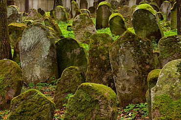 The Jewish cemetery in Lesko  Poland