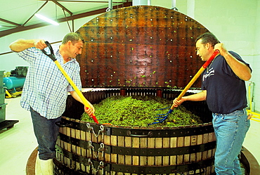 Wine press in the traditional way, Cretol and sons Champagne, Aube department, Champagne-Ardenne region, France, Europe