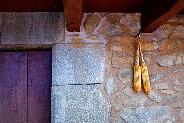 Corn cobs hanging on the facade of a house, Els Hostalets d¥en Bas, Garrotxa,Girona province, Catalonia, Spain