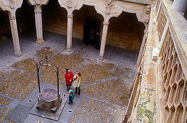 Courtyard of Casa de las Conchas, House of Shells,Salamanca,Spain