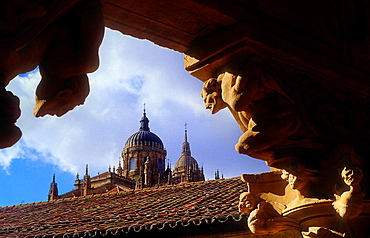 Cathedral from Cloister of Santa Maria de las Duenas convent, Salamanca, Spain