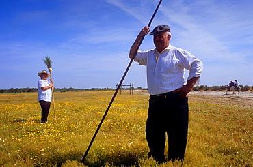 Pilgrims between Donana Palace and Rocio village,Romeria del Rocio, pilgrims on their way through the Donana National Park, pilgrimage of Sanlucar de Barrameda brotherhood, to El Rocio, Almonte, Huelva province, Andalucia