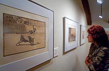 Spain, Zaragoza province,Fuendetodos: Museum engraving  La Tauromaquia Series, Juanito Apinani