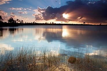 Sunset over swamp lake scene at the Everglades National Park, Florida, USA