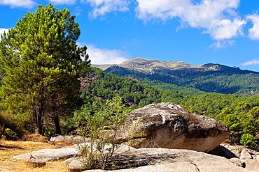 Iruelas Valley in the Sierra de Gredos Â¡vila Castilla Leon Spain
