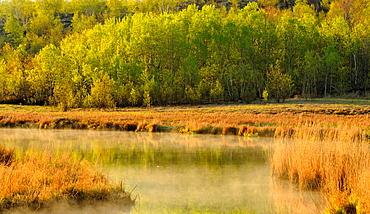 Robinson Lake, Greater Sudbury, Ontario, Canada