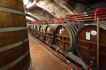 France, Normandy Region, Seine-Maritime Department, Fecamp, Palais Benedictine, museum and distillery of Benedictine liqeur, aging barrels
