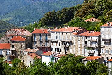 France, Corsica, Corse-du-Sud Department, La Alta Rocca Region, Ste-Lucie de Tallano, elevated town view