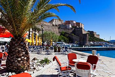 France, Corsica, Haute-Corse Department, La Balagne Region, Calvi, Port de Plaissance, yacht harbor, with view of the Citadel