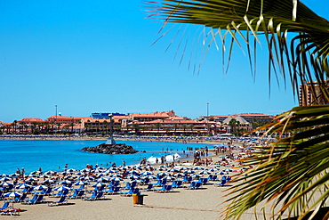 Playa de Los cristianos, beachh, Tenerife, Canary islands, Spain