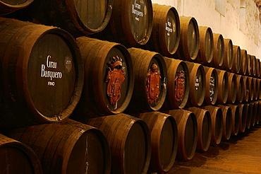 Montilla, Perez Barquero Wine Cellar, Montilla-Moriles Wine Route, Cordoba, Andalusia, Spain