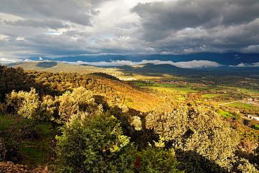 Country in Higuera de las Duenas avila Castilla Leon Spain
