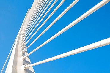 L'Assut d'Or bridge, view from below. City of Arts and Sciencies, Valencia, Spain.