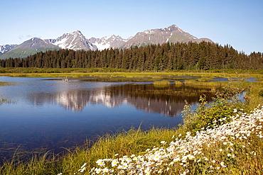 Near Seward, Kenai Peninsula, Alaska, USA