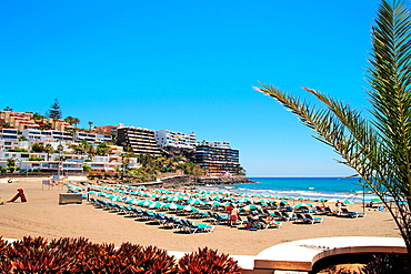 Beach of Puerto Rico municipality Gran Canaria island