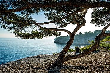Europe, France, Bouche-du-Rhone, Cassis Calanques of Port Miou