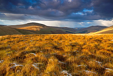 England, Northumberland, Northumberland National Park Last light near Auchope Rig, looking towards the Scottish Uplands