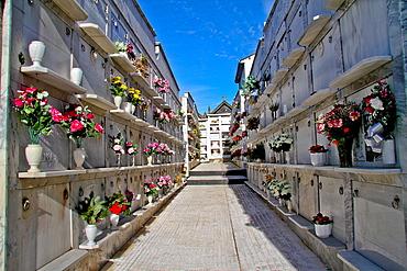 Cementery of Luarca, Asturias, Spain