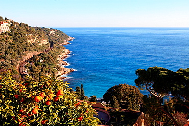 The Cap Martin, Alpes-Maritimes, French Rivera, Cote d'Azur, 06, PACA, France