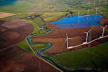 WIndmills and fields after the rain Tahivilla Cadiz area, Spain.