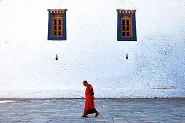 Monk walking inside Punakha Dzong, Punakha, Bhutan, Asia.