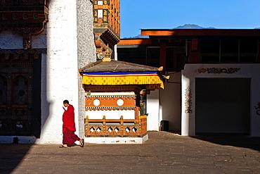 A buddhist monk walking through Punakha Dzong, Punakha, Bhutan, Asia.