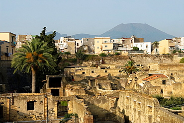 overview of the archeological site of Herculaneum, Pompeii, province of Naples, Campania region, southern Italy, Europe